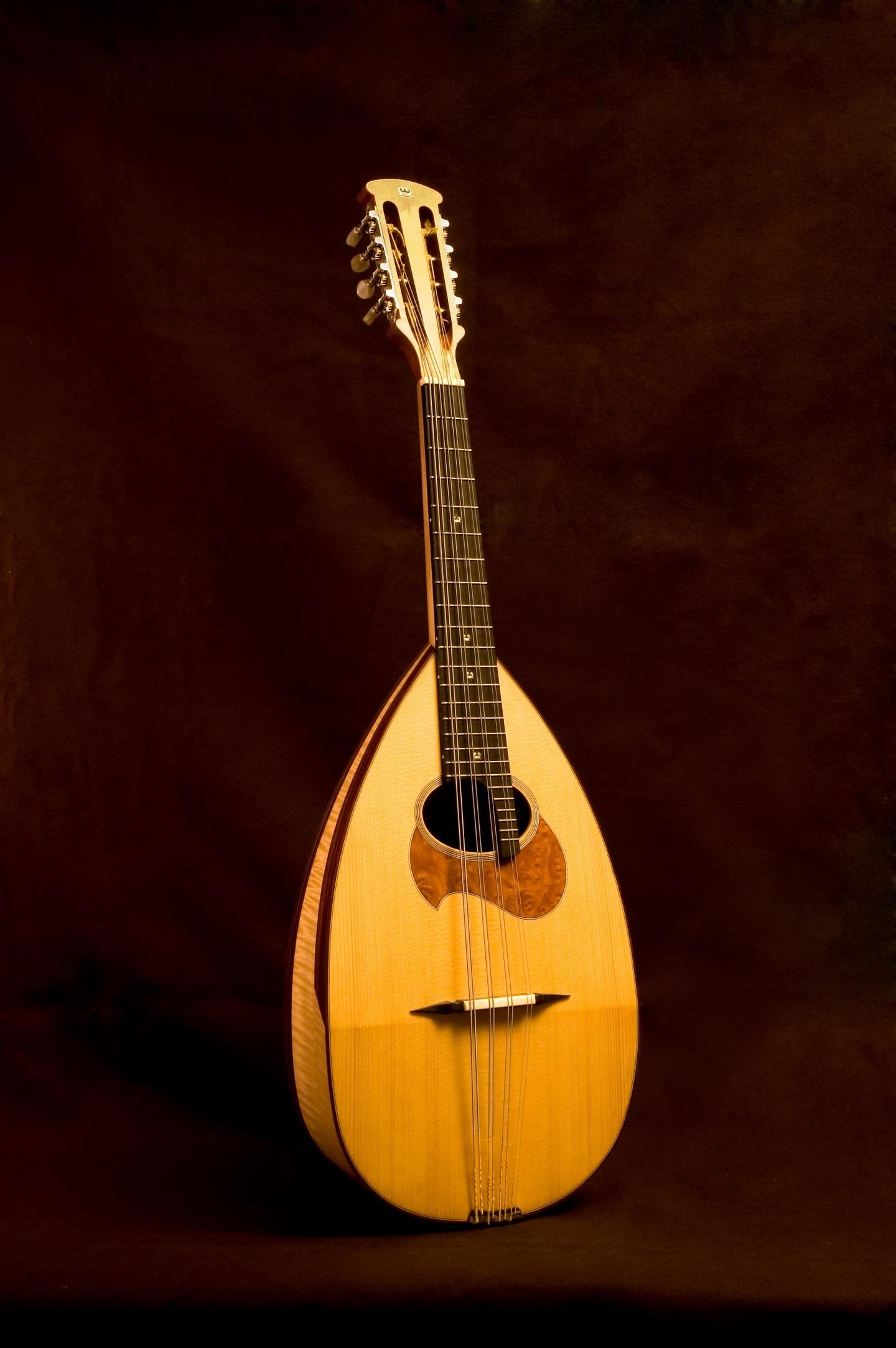il-mandolino-di-liuteria-gabrielli-milano