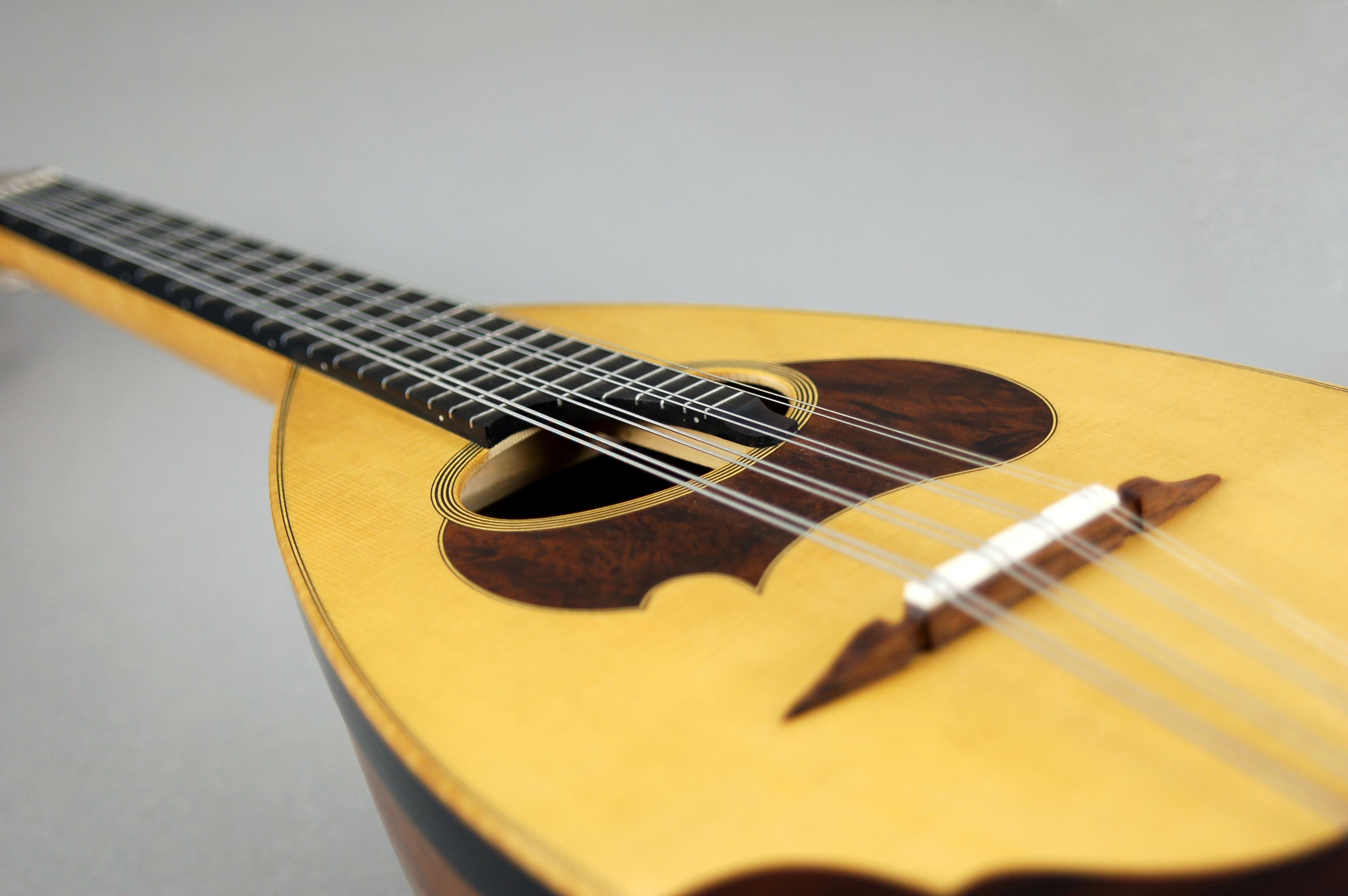 mandola-contralto-tavola-armonica